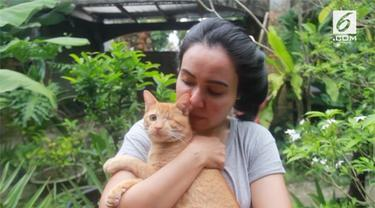 Seorang perempuan menghabiskan waktunya untuk mengurus kucing-kucing telantar di Pekanbaru, Riau. Jumlah kucing yang telah ia tampung adalah 158 ekor.