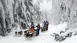 Pengemudi kereta luncur anjing menembus salju saat mengikuti lomba Sedivackuv Long di Destne v Orlicky Horach, Republik Ceko, Jumat (25/1). Lomba ini diikuti oleh delapan negara di Eropa. (Photo/Petr David Josek)