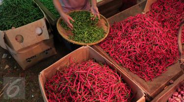 Pedagang tengah menata cabai dagangannya di Pasar Induk Kramat Jati, Jakarta, Selasa (24/11). Harga cabai, baik cabai merah keriting dan rawit, mengalami kenaikan di pasar tradisional. (Liputan6.com/Angga Yuniar)