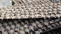 Produksi ikan asin di kabupaten agam mengalami penurunan. (Liputan6.com/ Dok. Humas agam)