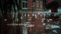 Ilustrasi hujan (pexels)