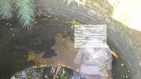 Warga Desa Tutup, Kecamatan Tunjungan, Kabupaten Blora, dibuat geger dengan penemuan jasad yang mengambang di sebuah sumur, Kamis (18/3/2021). (Liputan6.com/ Ahmad Adirin)