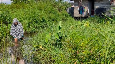 Kondisi Warga Miskin di Palembang, Tinggal di Atas Rawa Hingga Kekurangan Biaya Berobat