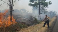 Kebakaran hutan dan lahan di Jambi (Bangun Santoso/Liputan6.com)
