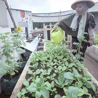 Inilah cara unik yang dipilih oleh Super Indo Berkebun untuk memperkenalkan gaya hidup hijau dan sehat kepada masyarakat. (Fimela.com/Bambang E. Ros)