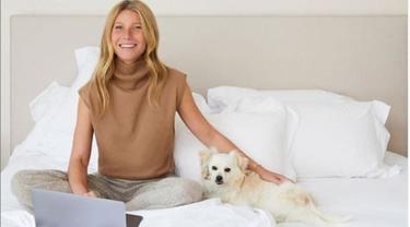 Gwyneh Paltrow Jualan Tempat Tidur Ramah Lingkungan, Harganya Tak Masuk Akal