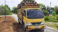 Truk yang diduga melakukan pencurian sawit milik Kopsa-M yang diserahkan ke Polsek Perhentian Raja, Kabupaten Kampar. (Liputan6.com/M Syukur)