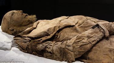 Mumi seorang Uskup dipamerkan pada museum sejarah Universitas Lund di Swedia. Mumi yang diperkirakan dari abad 17 ini masih terlihat utuh dengan rambut dan jenggot diwajahnya. (Dailymail.co.uk)