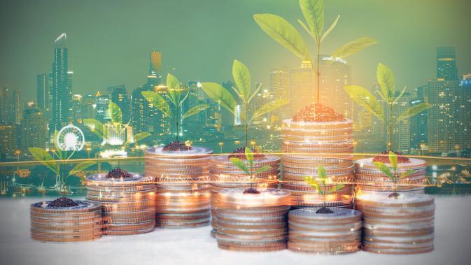SWF Bakal Tarik Investasi Rp 225 Triliun di Tahap Pertama ...