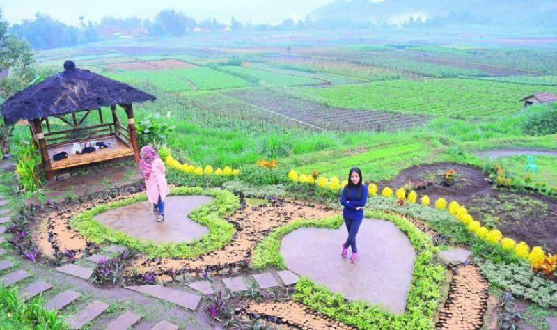 Wisata Sawahan Desa Pujari Kidul/dok:spotbaru