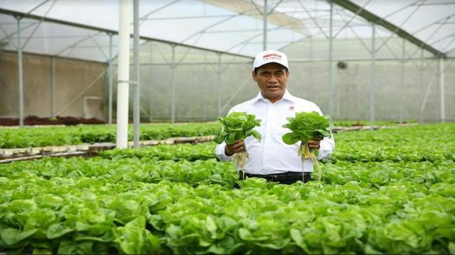 Mentan Lepas Ekspor Sayur Ke Singapura Dan Brunei Darussalam