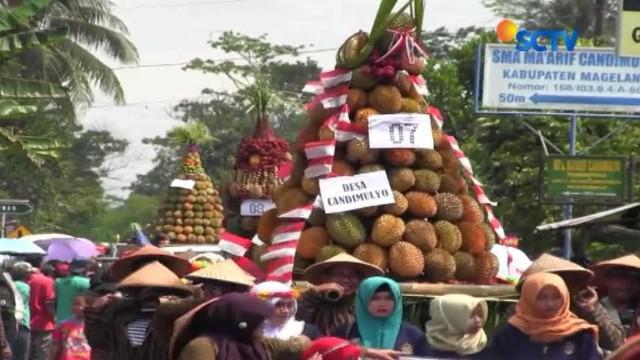 Festival durian yang menyuguhkan ribuan durian berbagai jenis yang pastinya langsung jadi rebutan.