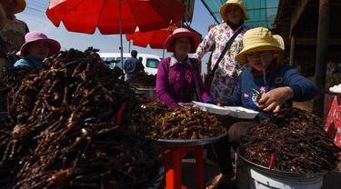Pedagang Kamboja menyiapkan tarantula goreng untuk dijual di wilayah Skun, Provinsi Kampong Cham, 4 Desember 2019.  (Photo by TANG CHHIN Sothy / AFP)