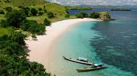 Taman Bawah Laut Pulau Komodo