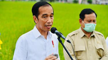 Presiden Jokowi Tinjau Lahan untuk Lambung Pangan Nasional