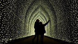 "Pertunjukan cahaya digambarkan untuk mempromosikan peluncuran acara  ""Christmas at Kew Gardens"" di Kebun Botani Kew, London, 21 November 2018. Taman Kew menghias pepohonan dan patungnya dengan tata lampu menarik menjelang perayaan Natal. (Tolga AKMEN/AFP)"