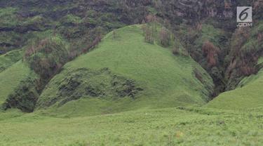 Pemandangan di kaki Gunung Bromo, Jawa Timur, Senin (27/11). Berkat dana desa, sebanyak 500 keluarga di Desa Ngadas dan Desa Jetak kini telah mendapatkan akses air bersih. (Liputan6.com/Immanuel Antonius)