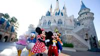 Walt Disney World Orlando ( Foto: Therichest.com )