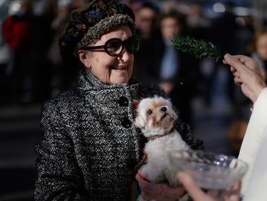 Seorang pendeta memberkati anjing saat upacara Saint Anthony di Madrid, Spanyol, Selasa (17/1). Saint Anthony adalah orang suci yang dianggap sebagai pelindung hewan di Gereja Katolik. (AP Photo / Daniel Ochoa de Olza)