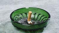 Ilmuwan melihat tingginya risiko diabetes bila seseorang kerap terpapar rokok.