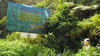 Perbatasan kawasan TNKS di Provinsi Jambi. (Foto: Istimewa/B Santoso)