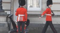 Detik-detik saat seorang penjaga Buckingham palace itu jatuh pun terekam oleh kamera pengunjung.