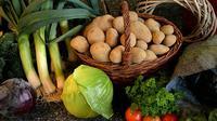 Beberapa jenis sayur ternyata memiliki kandungan protein, sayuran tersebut tentu saja bisa dijadikan bahan makanan pengganti daging