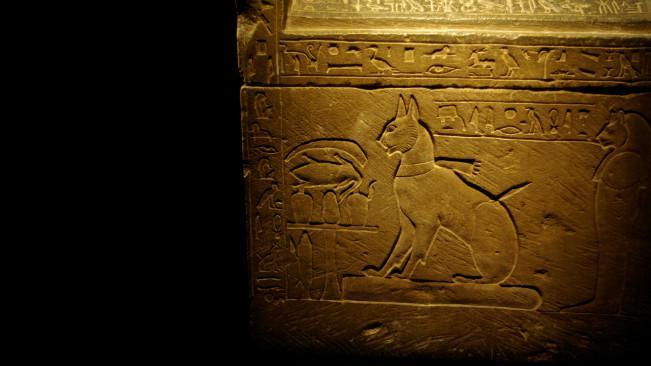 Ilustrasi kucing di sarkofagus Pangeran Thutmose. (Sumber Wikimedia Commons)