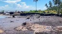 Kondisi sebuah pantai di Kabupaten Bengkalis yang rusak karena abrasi. (Liputan6.com/Istimewa)