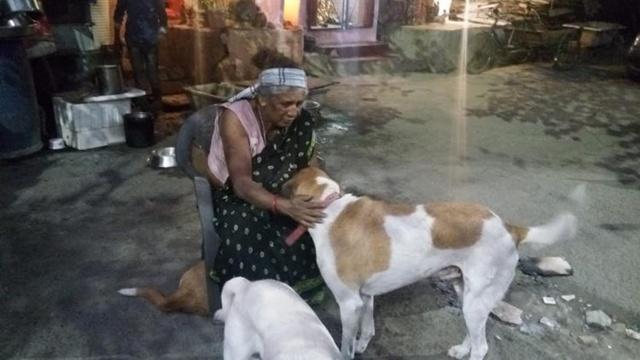 Nenek Devi sangat sayang terhadap anjing | Photo: Copyright oddyticenral.com