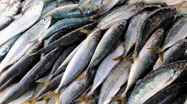 Manfaat Ikan Kembung untuk Kesehatan