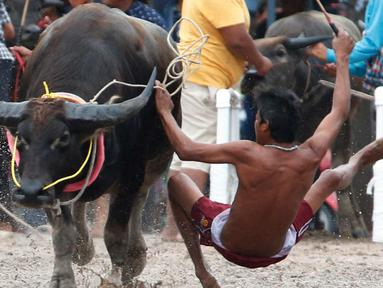 Seorang joki terjatuh saat bersaing pada festival lomba balap kerbau di Chonburi, Bangkok, Thailand  (16/7). Festival tahunan itu diikuti puluhan petani di Chonburi untuk merayakan panen padi. (AP Photo/Sakchai Lalit)
