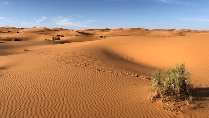 Salju turun dan menyelimuti Gurun Sahara. Apa penyebabnya?  | foto ilustrasi: pexels.com/@greg-gulik-349419