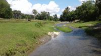 Meski kecil, mata air itu memberikan penghidupan yang layak bagi warga perbatasan. (Liputan6.com/Ola Keda)
