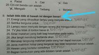 (Foto: Rinni Octa via Kementrian Humor Indonesia/ Facebook)