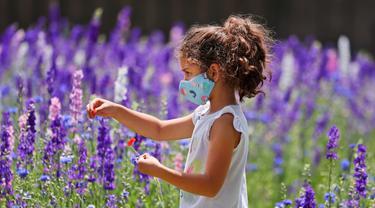 Seorang gadis Mia Liddell (7) mengenakan masker di tengah kekhawatiran penyebaran COVID-19 saat menikmati sepetak bunga liar Texas di Richardson, Texas, Selasa, (28/4/2020). (AP Photo / LM Otero)