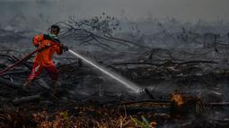 Petugas berusaha memadamkan kebakaran lahan gambut di Kecamatan Siak Hulu, Kabupaten Kampar, Riau, Senin (9/9/2019). Sulitnya sumber air di lokasi kebakaran menjadi kendala petugas untuk memadamkan bara api yang menghanguskan sedikitya lima hektare lahan gambut di kawasan tersebut. (Wahyudi / AFP)
