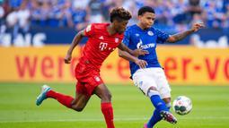 Gelandang Bayern Munchen, Kingsley Coman, berebut bola dengan gelandang Schalke, Weston McKennie, pada laga Bundesliga di Veltins-Arena, Gelsenkirchen, Sabtu (24/8). Schalke kalah 0-3 dari Munchen. (AFP/Guido Kirchner)