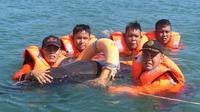 Lumba-lumba nahas itu terjerat akar bakau di Pantai Teluk Sepang, Kota Bengkulu. (Liputan6.com/Yuliardi Hardjo Putro)