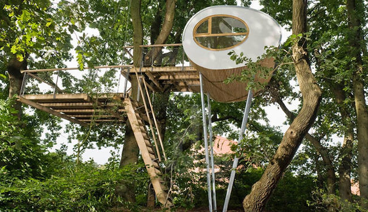 9900 Ide Desain Rumah Pohon HD Gratid Untuk Di Contoh