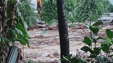 Banjir Bandang melanda Flores Timur, Nusa Tenggara Timur (NTT) pada Minggu (4/4/2021).