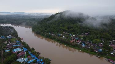 Hutan Hujan Tropis Kalimantan
