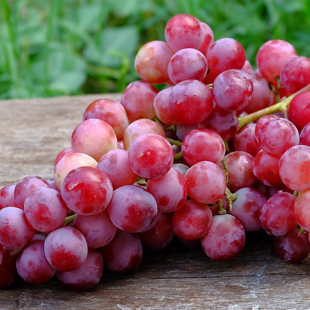 Manfaat Mengkonsumsi Buah Anggur Setiap Hari