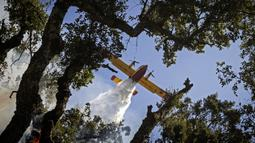 Sebuah pesawat Royal Moroccan Air Force Canadair memadamkan kebakaran hutan di wilayah Chefchaouen, Maroko, 17 Agustus 2021. Pesawat pemadam kebakaran digunakan untuk mengatasi kebakaran yang telah menghancurkan sekitar 200 hektare hutan. (FADEL SENNA/AFP)