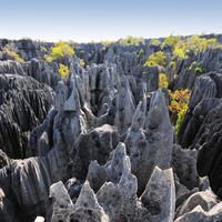 Tsingy de Bemaraha, Madagaskar. (seattlebackpackersmagazine.com)