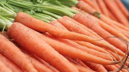 Vitamin A pada wortel membantu kulit bagian mata Anda untuk lebih elastis dan tak lekas keriput. (commons.wikimedia.org)