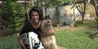 Sebagai penyayang binatang, khususnya anjing dan kucing, Davina Veronica mengutuk festival Yulin di China.