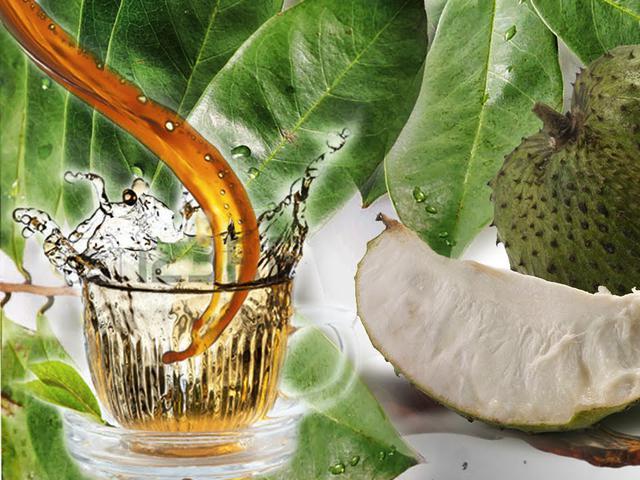 Bawang Lanang Untuk síntomas de diabetes