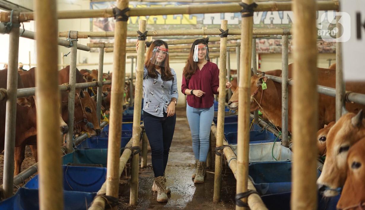 Sales Promotion Girl (SPG) menunggu pembeli di Mal Hewan Qurban H. Doni di Depok, Jawa Barat, Kamis (16/7/2020). Di masa pandemi, mal hewan kurban kembali menggunakan jasa SPG untuk menawarkan hewan kurban dengan tetap menerapkan protokol kesehatan. (Liputan6.com/Immanuel Antonius)