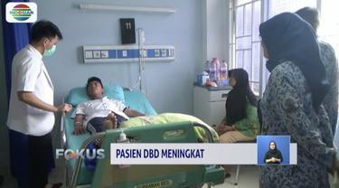 Penderita penyakit DBD di Kota Bogor meningkat hingga mencapai 100 pasien.